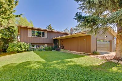 Teton Village, Tetonia, Swan Valley, Victor, Driggs, Jackson, Alta Single Family Home For Sale: 435 E Simpson Avenue
