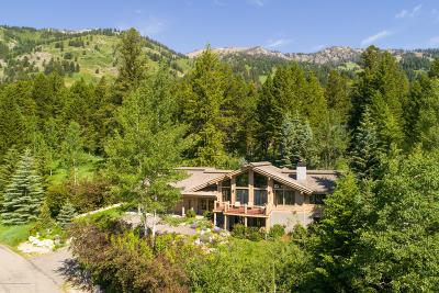 Teton Village WY Single Family Home For Sale: $6,550,000