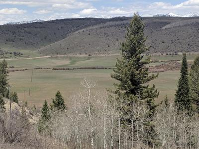 Thayne Residential Lots & Land For Sale: Lot 2 Willow Creek Ranch