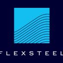 FLXS logo