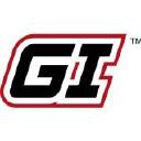 GEIN logo