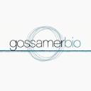Логотип GOSS