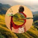 GVDNY logo