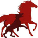 PETVD logo