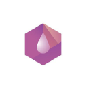 PVCT logo