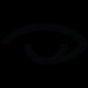 STAA logo
