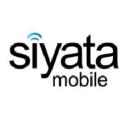 SYATF logo