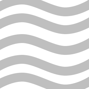 VISM logo