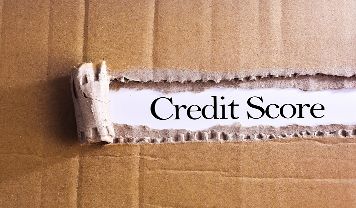 Everything You Need to Know About Your CIBIL Score