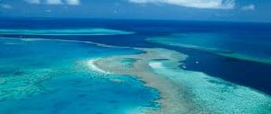 karang terpanjang