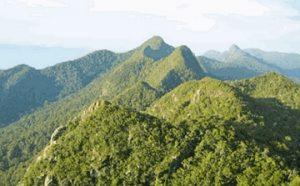 Pegunungan Schwaner