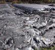 3 Jenis Pencemaran Tanah dan Penjelasannya