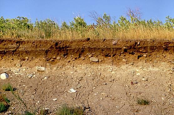 13 Ciri-ciri Tanah Endapan dan Proses Pembentukan