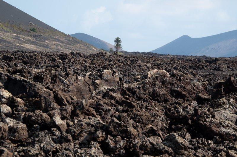 7 Ciri-ciri Tanah Vulkanik