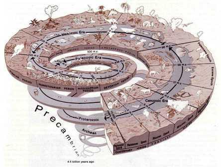 Skala Waktu Relatif : Pengertian – Prinsip – Sejarah Pembentukan Bumi