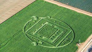 crop circle intel nvidia