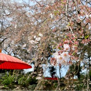 法華原華庭園
