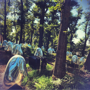 武蔵野樹林パーク