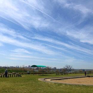 紀の川第8緑地公園