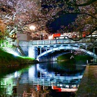 松川辺りの桜