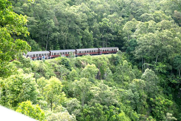 心に残る絶景が広がる、世界遺産の熱帯雨林・オーストラリアのキュランダへ