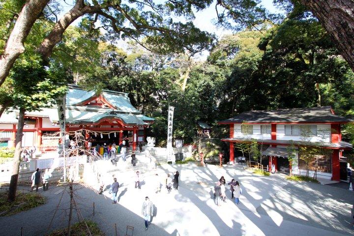樹齢2100年超の大楠が話題「來宮神社」