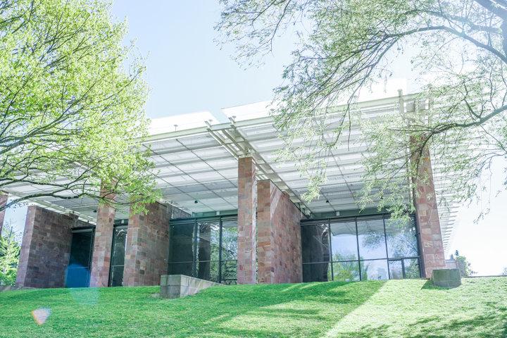本物の睡蓮とともにモネの『睡蓮』を観られる「バイエラー財団」美術館