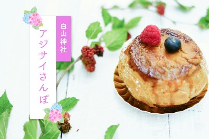 東京アジサイさんぽ#5 ―白山神社のアジサイと周辺のカフェ&スイーツ5選