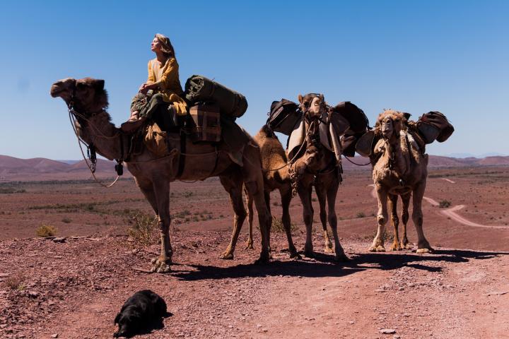 砂漠の旅は孤独で、思っていた以上につらいことの連続