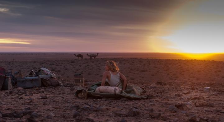 オーストラリアの壮大な景色を眺めながら、主人公の旅に思いを馳せる映画