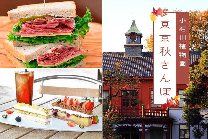 東京秋さんぽ#6ー小石川植物園の秋の彩りと甘いスイーツやグルメを訪ねて