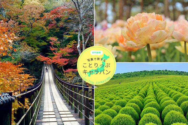 秋には紅葉も。自然の宝庫、茨城県の豊かな色彩が織りなす絶景スポット|ことりっぷフォト