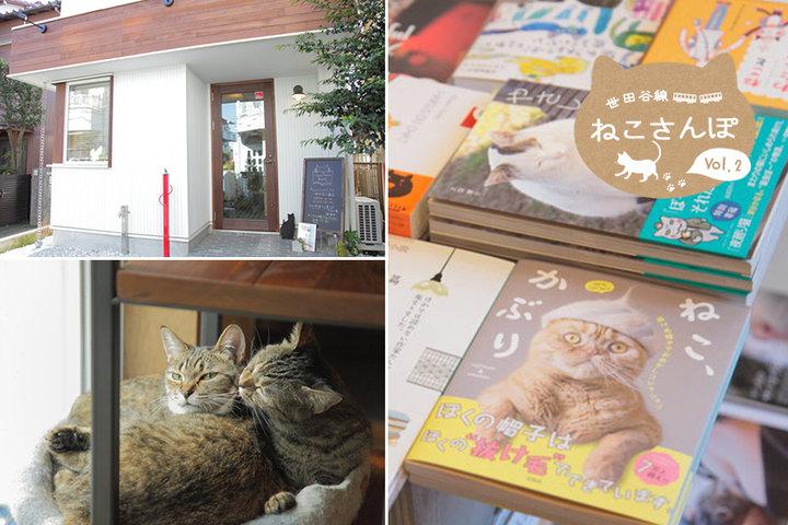 世田谷線ねこさんぽ#2− 猫の店員も大活躍! 猫の本がいっぱいのお店「キャッツ ミャウ ブックス」