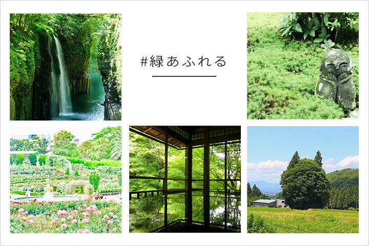 「#緑あふれる」入賞者発表|写真投稿コンテスト