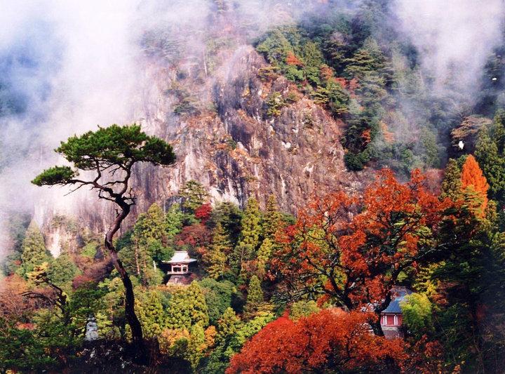 ここも行きたい、人気の紅葉スポット「鳳来寺山」&「岡崎東公園」