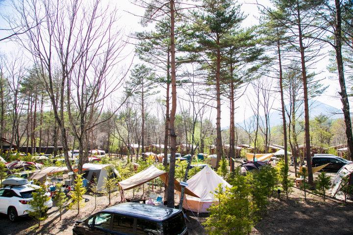 広大なキャンプフィールドでBBQ