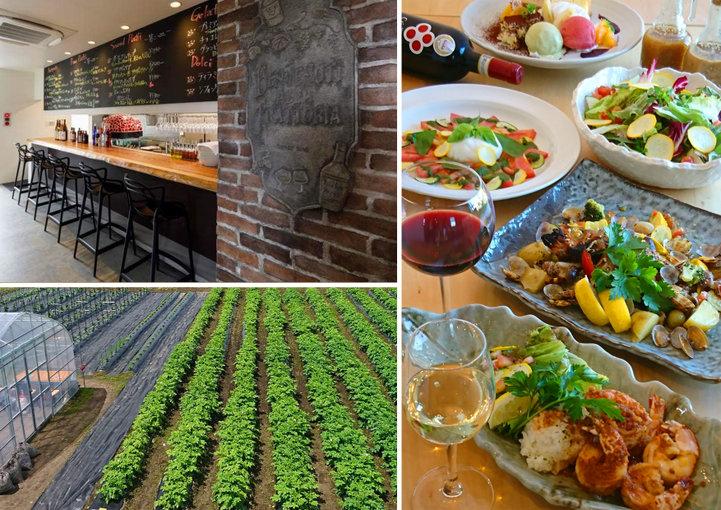 裏の自家農園で採れた有機野菜がたっぷり。素材の旨味が詰まった創作イタリアン「Trattoria サッチ」