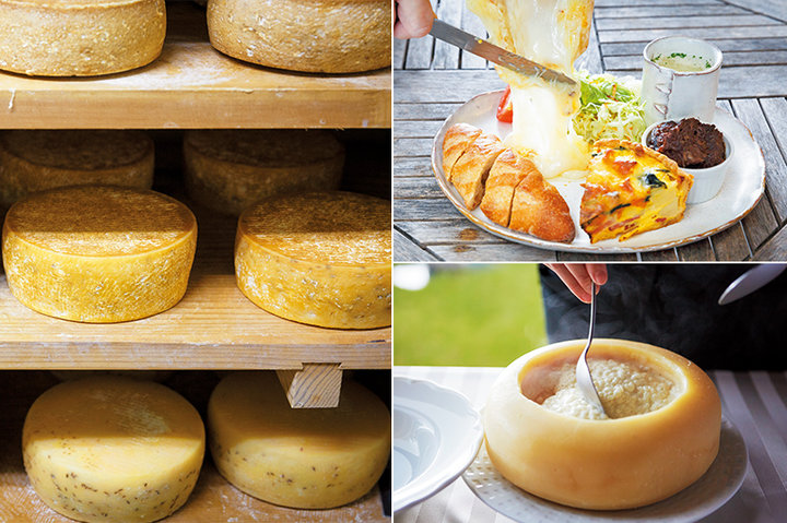 【book in book】とろける幸せ 全国のCHEESE BOOK