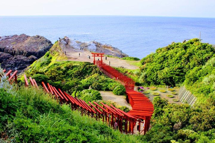 山口絶景めぐりの旅へ。世界中から注目を浴びる神社や古民家カフェ、丘の上の草原も♪