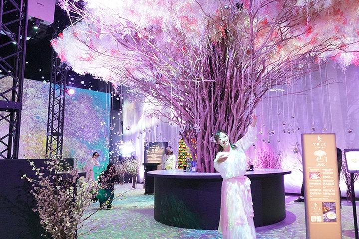 「桜」をテーマにした9つのガーデン、15の体験