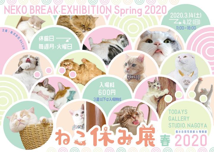 【写真展】愛知・名古屋「ねこ休み展 春 2020」