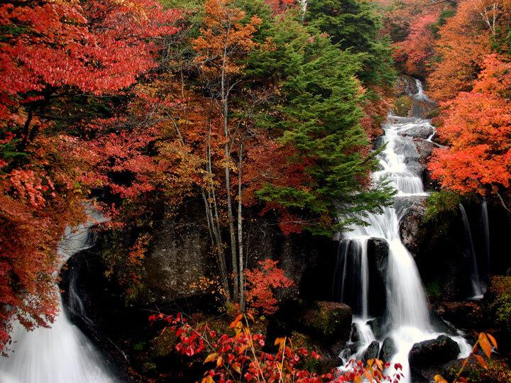 迫力満点の「竜頭の滝」を眺めながら、茶屋の甘味でひと休み