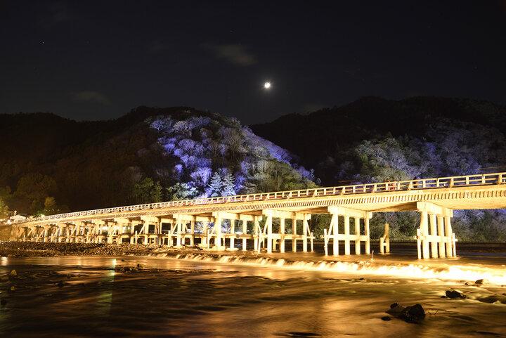 京の冬の風物詩、灯りと花が幻想的に彩る「嵐山花灯路」