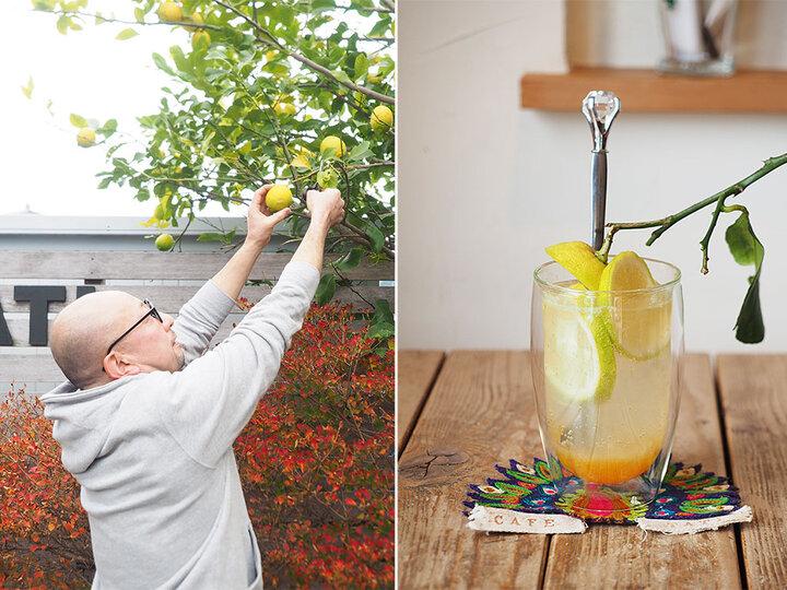 お庭で採れたレモンを楽しむオリジナルカクテル