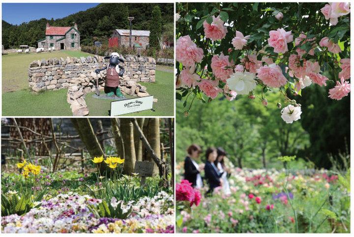 """四季の花々を楽しめる庭園と""""ひつじのショーン""""に癒される「ローザンベリー多和田」"""