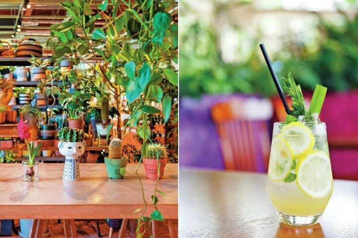 【5】ボタニカルカフェでリラックス