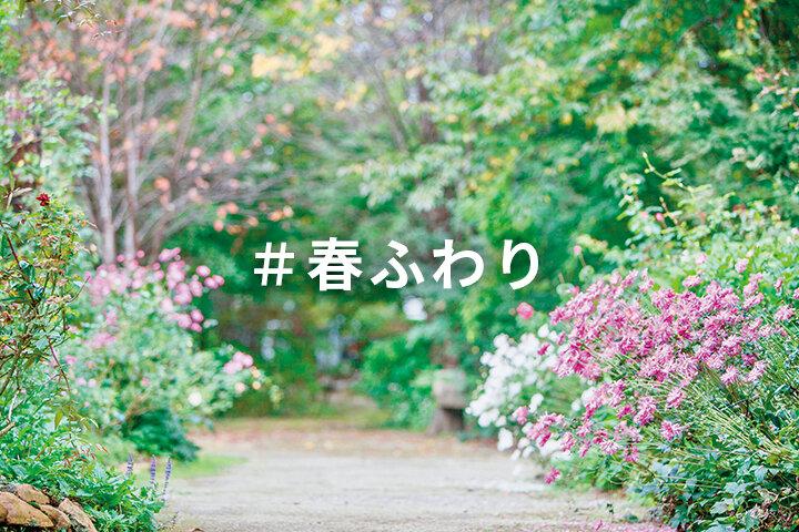 ことりっぷマガジンvol.28発売記念「#春ふわり」 写真投稿コンテスト