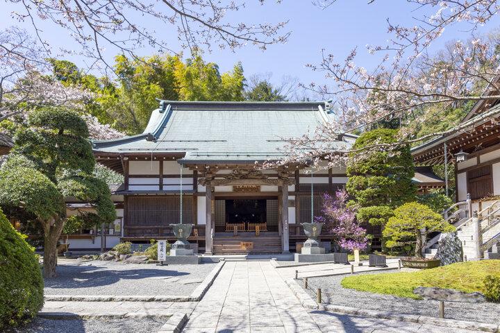 竹林のほかに四季折々の風情も楽しめる、足利・上杉家の菩提寺「報国寺」
