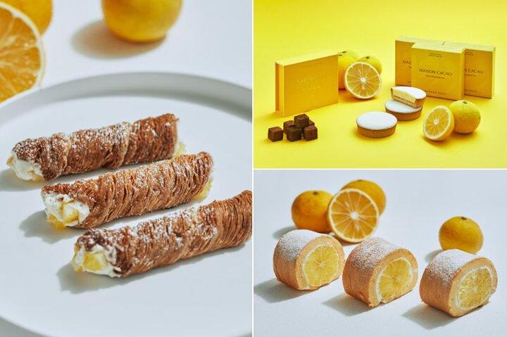 """希少柑橘""""湘南ゴールド""""を使用。「MAISON CACAO」の季節限定チョコレート"""