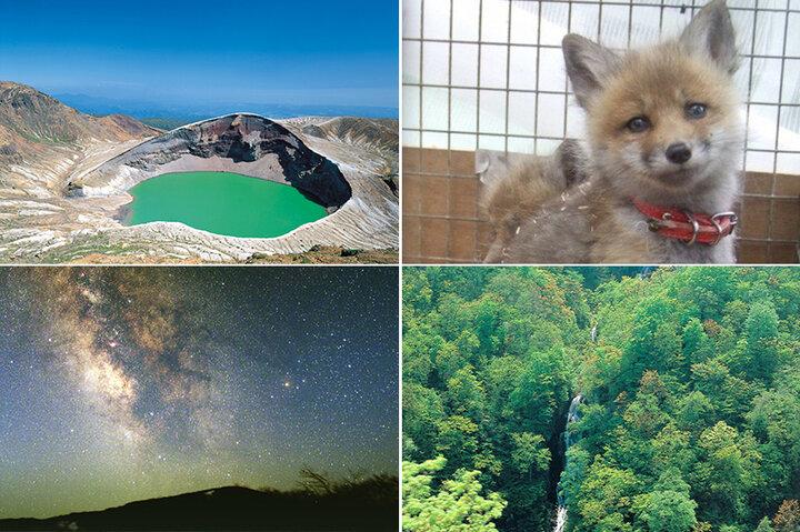 宮城蔵王で訪れたい神秘の絶景・御釜から愛らしいキツネの動物園まで♪ グリーンシーズンおすすめスポット4選
